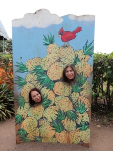 06-07-2013-Hawaii (1)