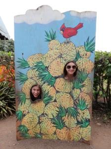 06-07-2013-Hawaii (2)