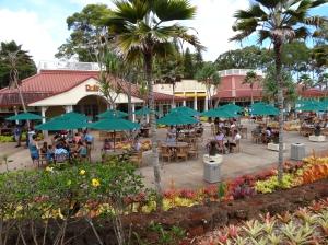 06-07-2013-Hawaii (5)