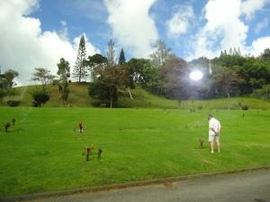 08-07-2013-Hawaii (6)