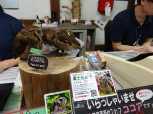 13-07-2013-Japão (0008)