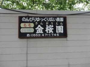 13-07-2013-Japão (0065)