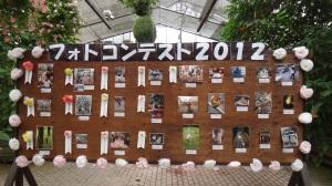 13-07-2013-Japão (009)