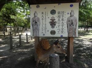 19-07-2013-Japão (0020)