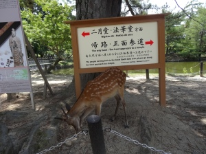 19-07-2013-Japão (18)