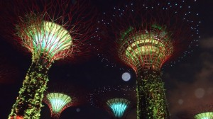 Show_Gardens By The Bay