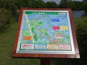 07-06-2016_hakodate_onuma-quasu-national-park_04