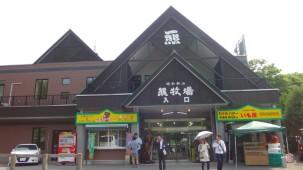 07-06-2016_usu-gun_hokkaido_showa-shinzan-kuma-botujo_04