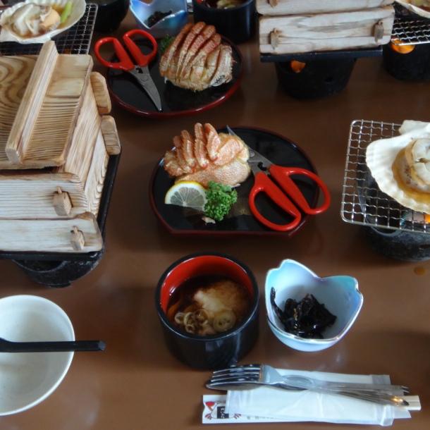 07-06-2016_usu-gun_hokkaido_showa-shinzan-kuma-botujo_08