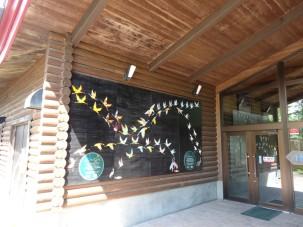 10-06-2016_kushiroshi-tanchozuru-natural-park_07