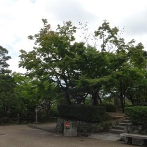 13-06-2016_shrine-garden_kyoto_05