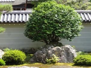 14-06-2016_kyoto_nanzen-ji-temple_09