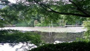 15-06-2016_kyoto-ryoanji-temple_05