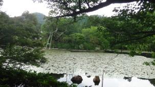 15-06-2016_kyoto-ryoanji-temple_08