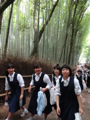 15-06-2016_kyoto_bamboo-grove_08