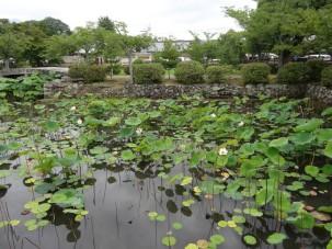 15-06-2016_kyoto_tenryu-ji-zen-temple_03